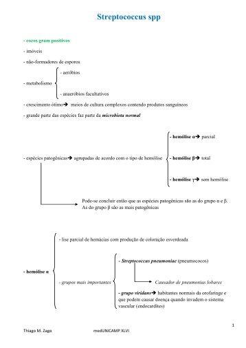 Streptococcus spp - Zago