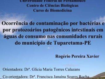 apresentação - Universidade Federal de Pernambuco