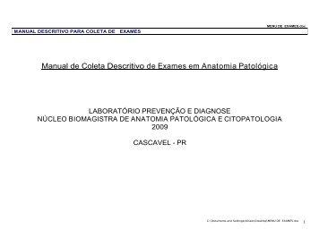 Manual de Exames - Laboratório Prevenção & Diagnose