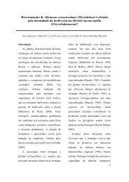 Relatório - PDBFF
