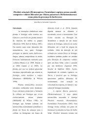 Relatório - PDBFF - Inpa
