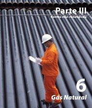 6 Gás Natural - Aneel