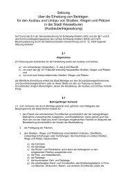 Ausbaubeitragssatzung 2004 - Wesselburen