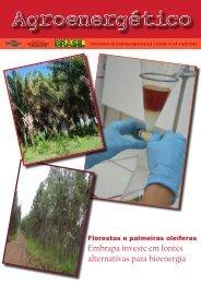 Agroenergético n° 34 - 10/09/2012 - Embrapa Agroenergia