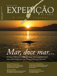 Whalewatching Especial Manguezais: Pinguins-de ... - Ipec