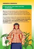 MILHO TRANSGÊNICO Distâncias Mínimas de Isolamento - Monsanto - Page 6