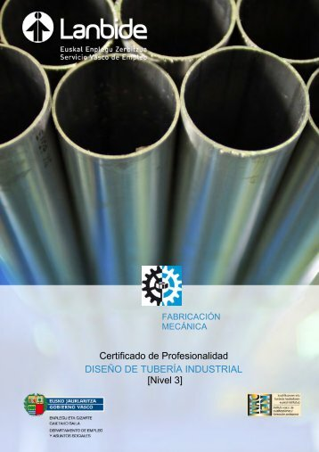 Certificado de Profesionalidad DISEÑO DE TUBERÍA ... - Lanbide