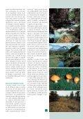 di MUSCHIO di MUSCHIO - Riviste - Page 2
