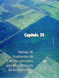 P arte IV - Capítulo XXIV - Ministério do Meio Ambiente