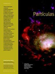 Partículas Elementares à Luz dos Buracos Negros - IFT