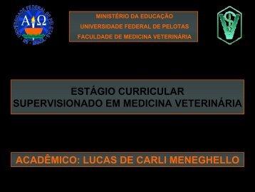 Manejo da Pastagem - Universidade Federal de Pelotas