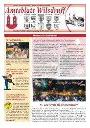 Ausgabe Januar 2010 - Stadt Wilsdruff