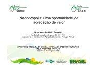 Nanoprópolis: uma oportunidade de agregação de valor