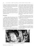 Morfologia dos dentes do bicho-preguiça de coleira ... - Biotemas - Page 4