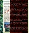 Aqui - Cartório Rui Barbosa - Page 7