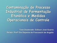 Contaminação de Processo Industrial de Fermentação ... - CCA