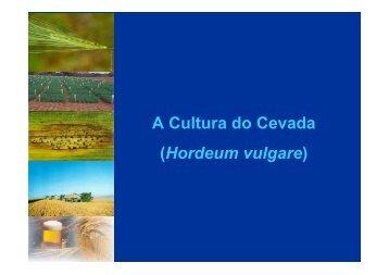 Aula - Cevada - UFSM