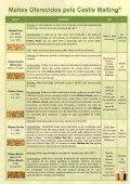 A Castle Malting - WE Consultoria - Page 5