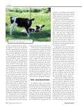 Leite - Engarrafador Moderno - Page 3