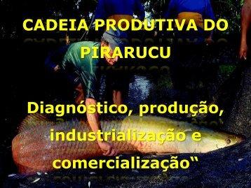 Cadeia Produtiva do Pirarucu na Amazônia - Suframa