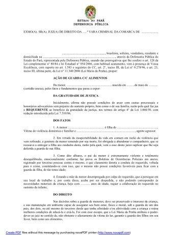 Ação de Guarda - Defensoria Pública do estado do Pará