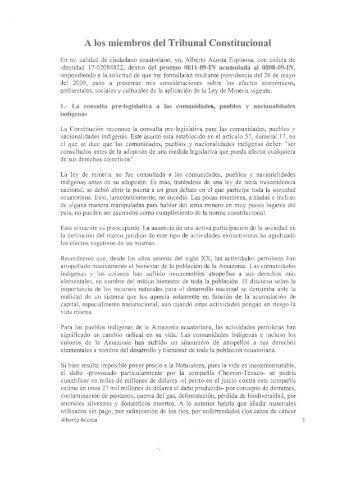 Criterio de Alberto Acosta presentado ante la Corte
