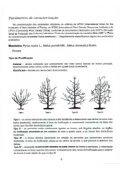 Pomóideas Regionais - DRAP Centro - Page 7