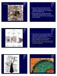 Morte Celular Programada - Unesp - Page 5