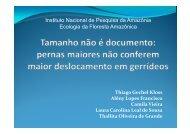 Instituto Nacional de Pesquisa da Amazônia Ecologia da ... - PDBFF