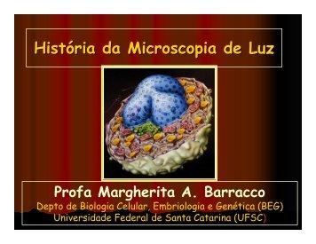 Histórico Microscopia - LIAA