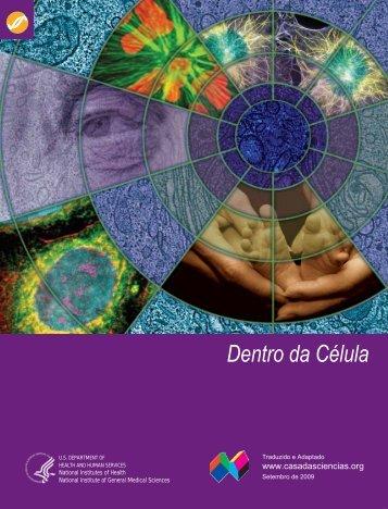 Dentro da Célula - Banco de Imagens da Casa das Ciências