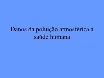 Danos da poluição atmosférica à saúde humana - Plato