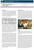 Obesidade em Gatos Flatulência Canina 9 de Setembro ... - Pedigree - Page 4