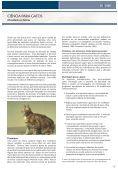 Obesidade em Gatos Flatulência Canina 9 de Setembro ... - Pedigree - Page 5