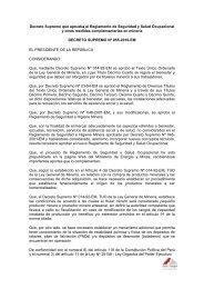 Decreto Supremo que aprueba el Reglamento de Seguridad y ...