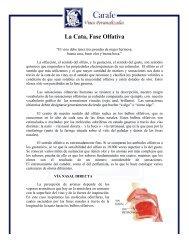 La Cata, Fase Olfativa - Carafe Vinos Personalizados