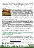 SALUBA NANÃ! - Templo Estrela do Oriente - Page 6