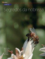 Segredos da nobreza - Revista Pesquisa FAPESP