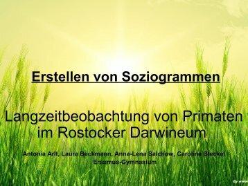 Erstellen von Soziogrammen - Zoo Rostock