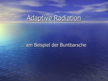 Adaptive Radiation - Zoo Rostock