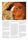 Die Lust am  Jagen - Zooshop-MAX - Page 7