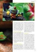 Heimtier - Petplus24 - Page 4