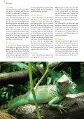 Heimtier - Petplus24 - Page 5