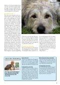 Heimtier - Petplus24 - Page 7