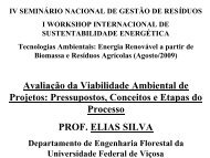 Avaliação da Viabilidade Ambiental de Projetos ... - Instituto Brasil