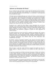 Salvem as florestas de Pinus - Sociedade Brasileira de Silvicultura