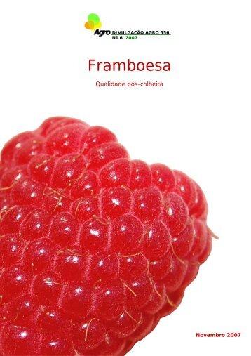 Framboesa - Qualidade pós-colheita - INRB