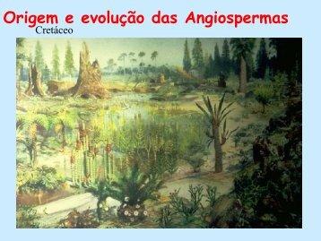 Origem e evolução das Angiospermas - Departamento de Biologia ...