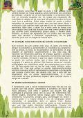 A Escola Tradicional XA Escola Humanista - Beto Carrero World - Page 3