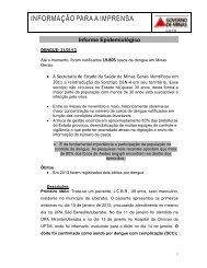 Informe Epidemiológico - Dengue 31.01.2013 - Secretaria de ...